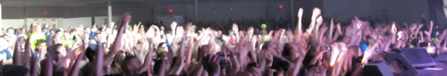 crowd cropped